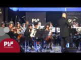 PIF2019 | Premio Category auditions 3rd round, performance by Zhang Zhiyuan